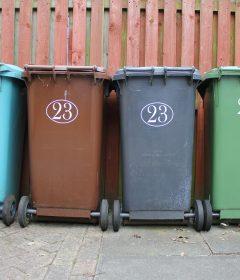 Kosze na śmieci w mieście