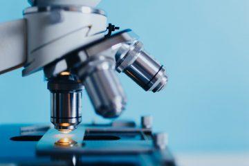 Witamina B12 ważna nie tylko dla układu nerwowego